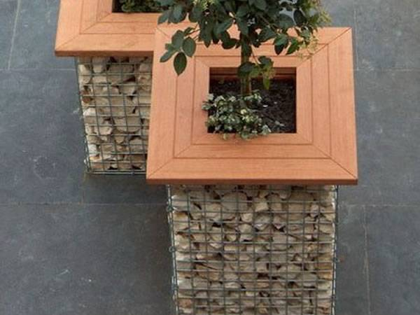 Two gabion planters with wooden seats on the ground and two plants in the gabion planter.