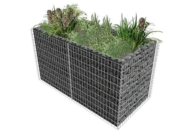 Several green plants are raised in the gabion planter.